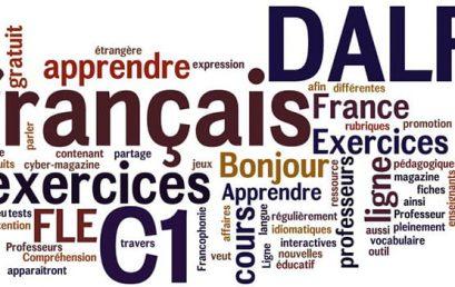 FRENCH LANGUAGE DELF TCF TEF CLASSES IN DELHI