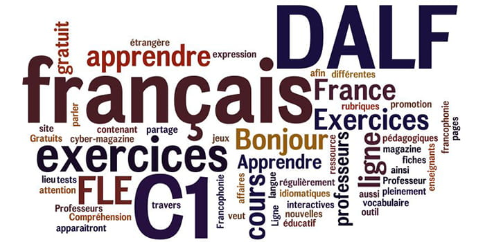 FRENCH LANGUAGE DELF TCF TEF CLASSES IN DELHI